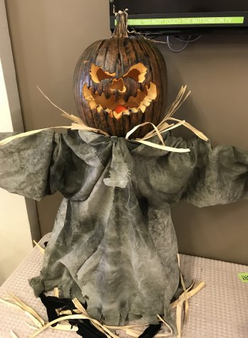 Hickory Cottage/Willow Way 2nd Place Pumpkin
