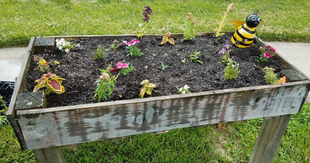 garden start